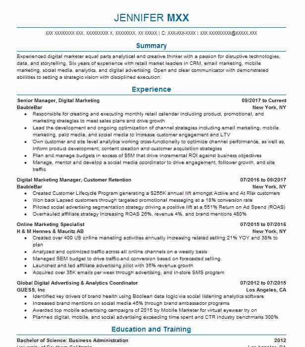 Online Marketing And Social Media Resume Examples  Marketing