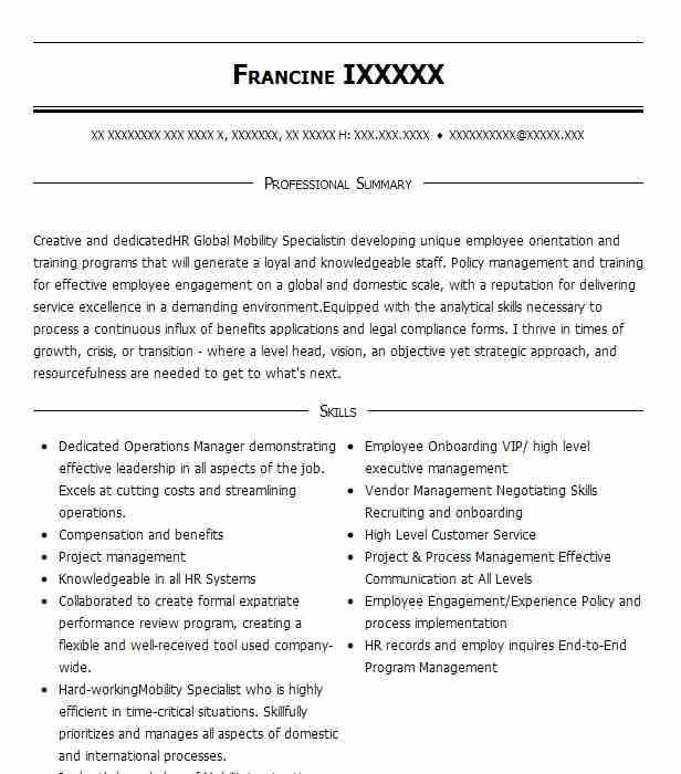 global hr manager resume example io data centers  llc