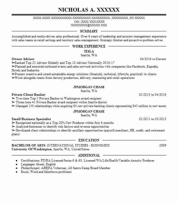 best franchise owner resume example