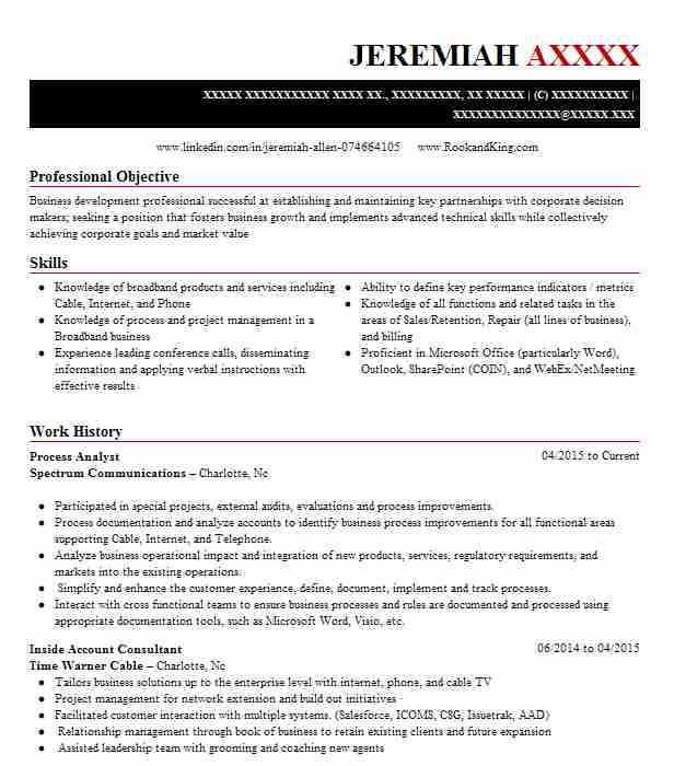 process analyst resume sample