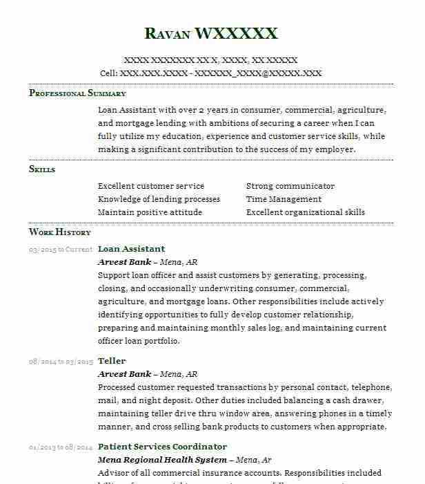 loan assistant resume sample