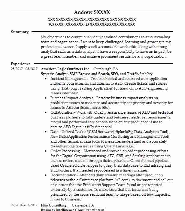 epic analyst resume example pro healthcare sussex wisconsin