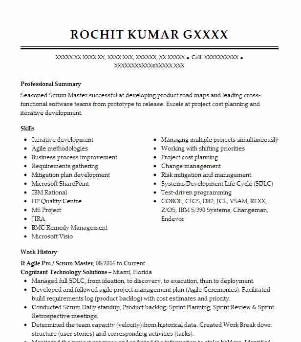 Agile Project Manager Scrum Master Resume Example American