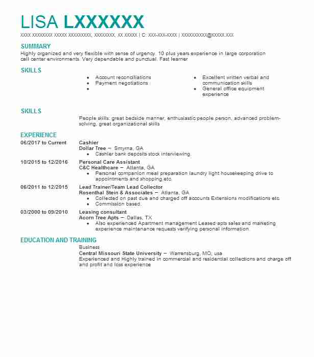 10471 collections resume examples accounting and finance resumes