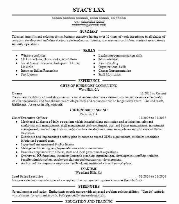 small business and entrepreneurship resume examples business