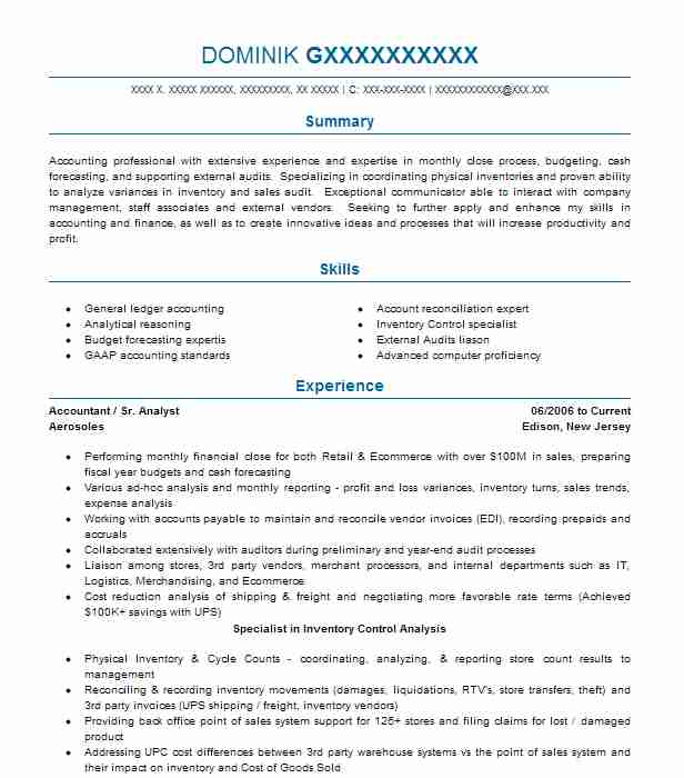external auditor resume sample
