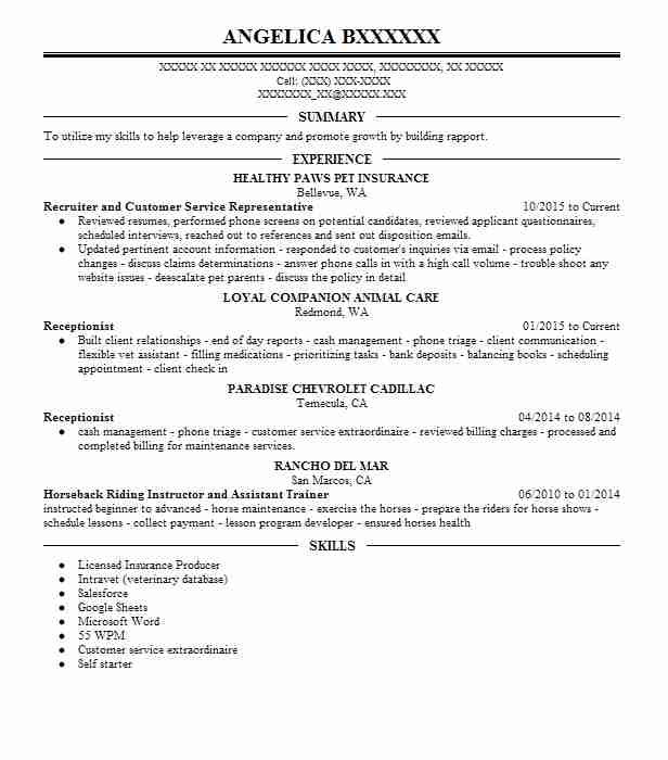 director talent management resume example excellus buecross blue