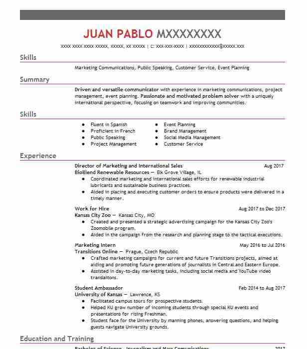 Create My Resume  Resume Editor