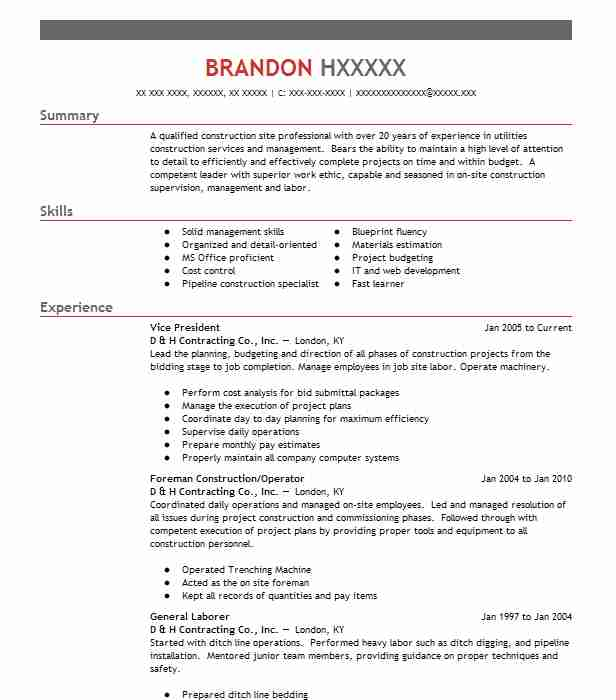 vice president - Construction Management Resume