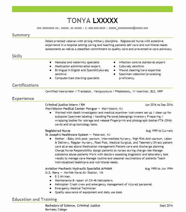 Criminal Justice Intern / RN  Sample Lawyer Resume