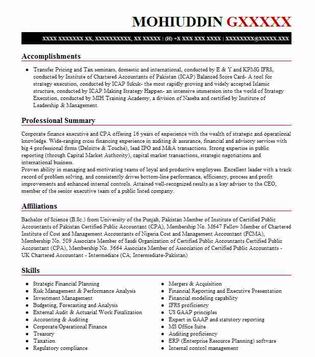 best finance manager resume example