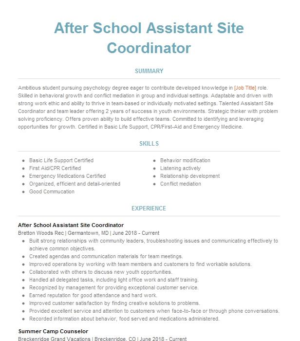 after school childcare site director resume example