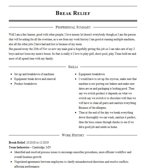 Career Break 2011 2017 Resume Example Career Break Nanuet New York