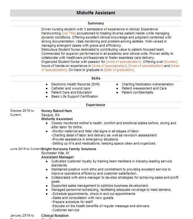 student midwife resume example nest midwifery