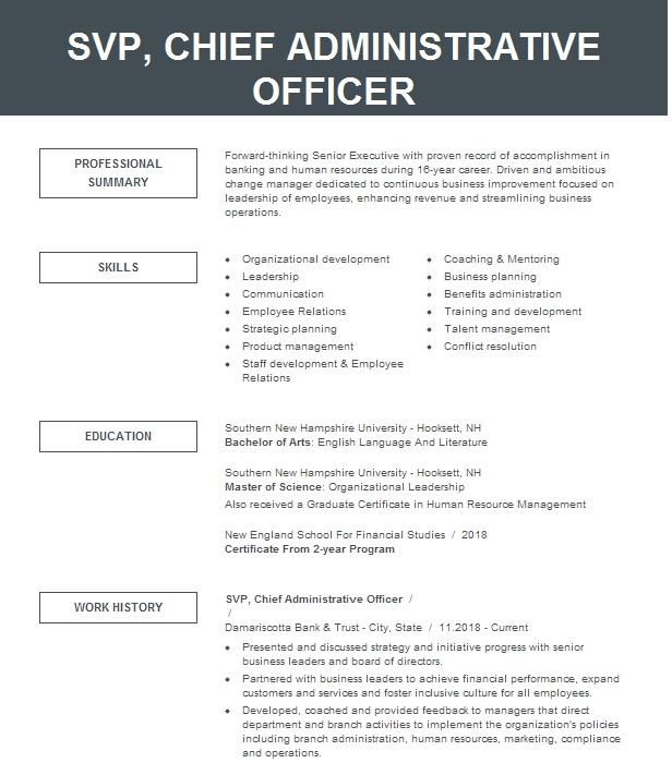 Chief Administrative Officer Resume Example Lincoln Child