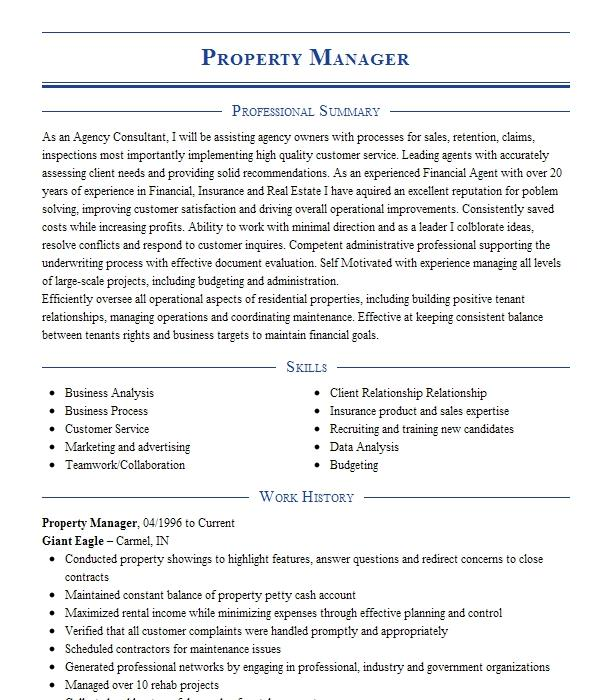 property manager  owner resume example manesis real estate