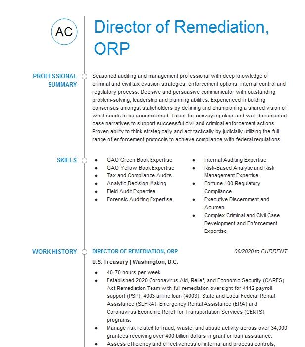 Audit Director Resume Example: SVP, Audit Director Resume Example Bank Of America