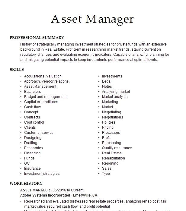 software asset manager resume example university of