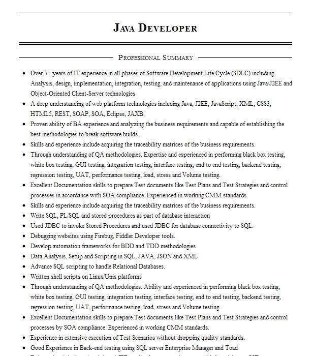 java developer and test engineer resume example test