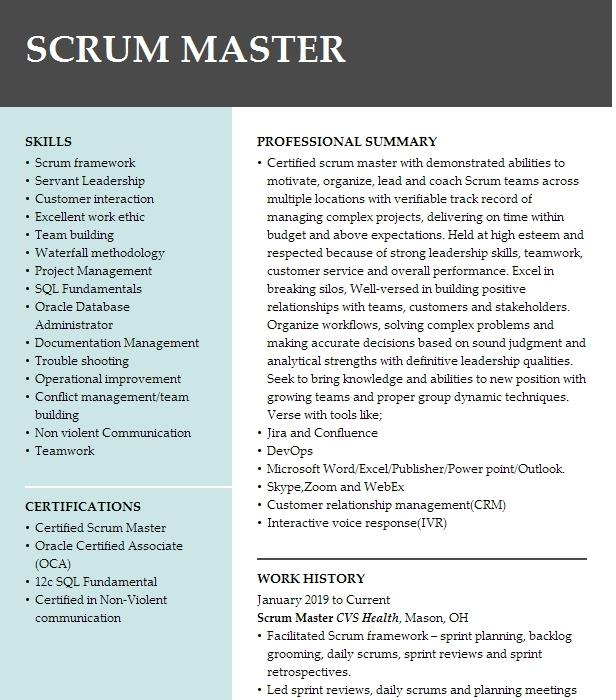 scrum master resume example capital one financial corp