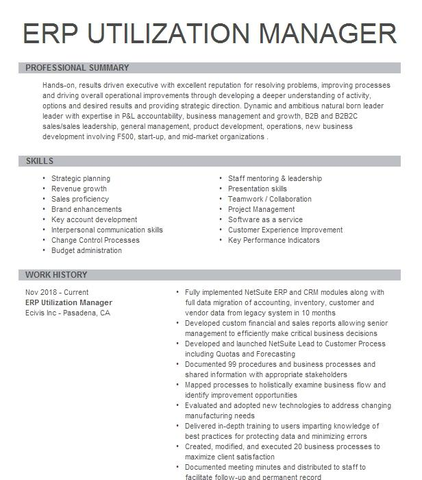erp manager resume example sony electronics  san diego