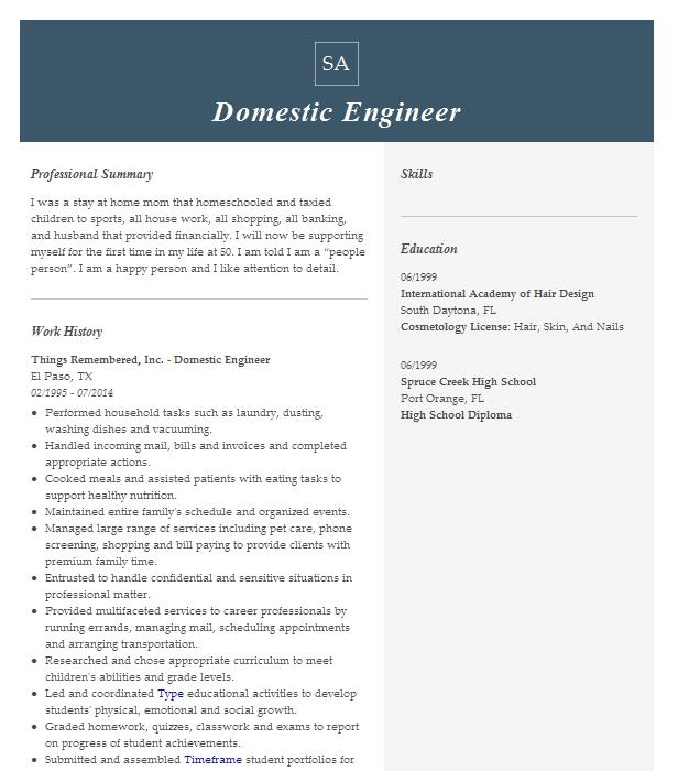 Domestic Engineer Resume Example Home