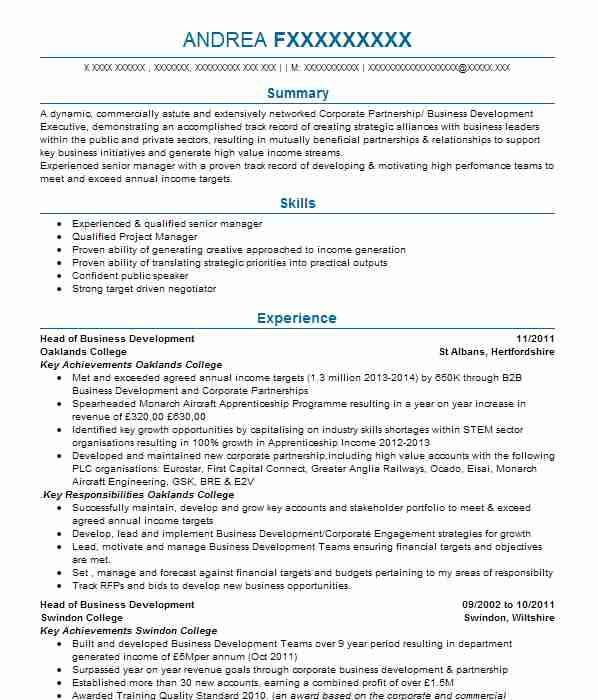 senior recruitment consultant cv example  blue arrow