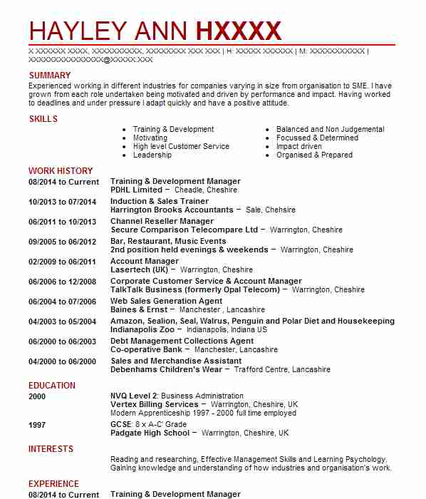 132 professional development cv examples