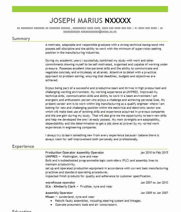 224 electrical and electronics cv examples