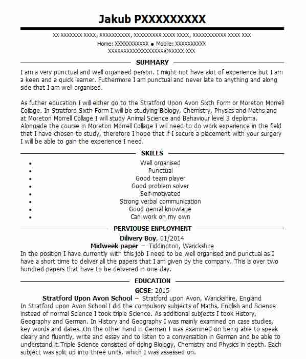 equine groom cv example  private equine yard
