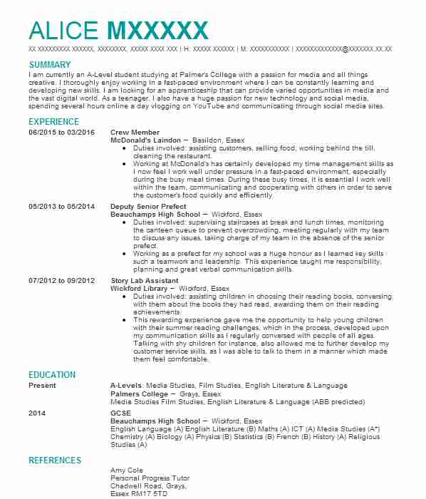 senior marketing manager cv example  kaplan international