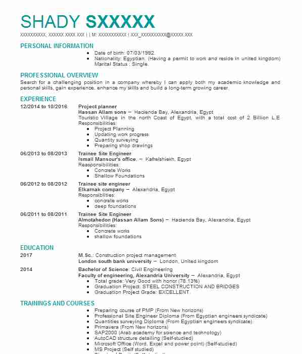 construction project manager cv