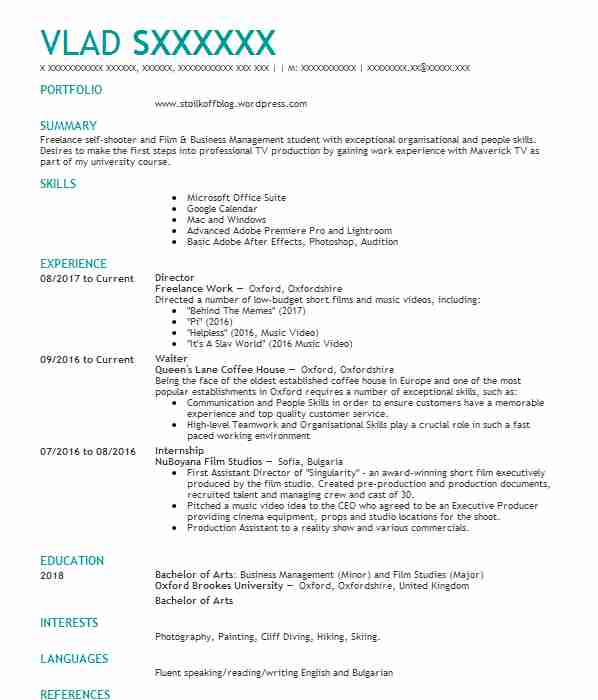 313 Film Cv Examples Entertainment And Media Cvs Livecareer