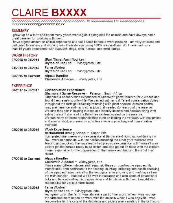 1374 veterinary cv examples  u0026 templates