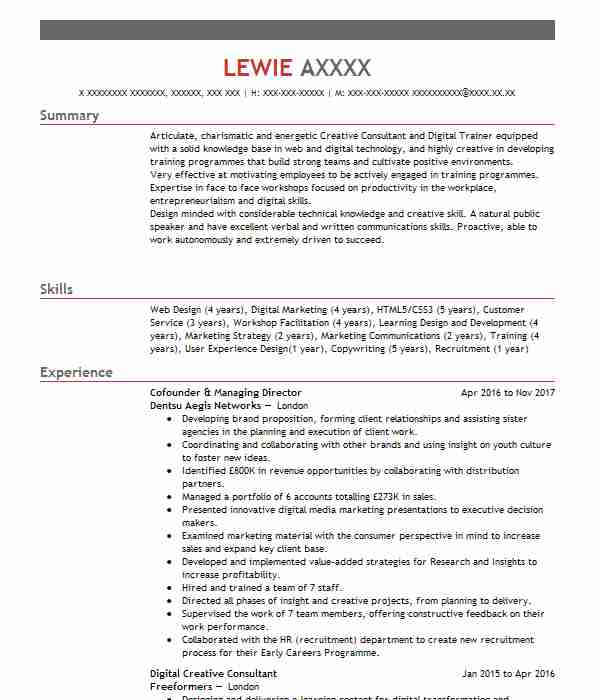 CV Example International Institute Of Risks And Safety Management